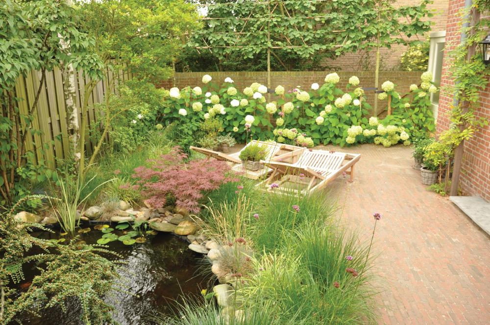 Pim van alphen hovenier maak van uw droom tuin werkelijkheid for Tuin decoratie met stenen